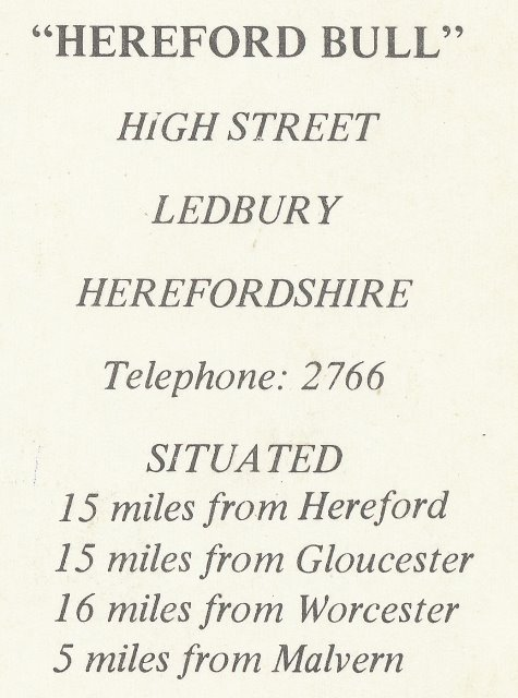 [The Hereford Bull Postcard]