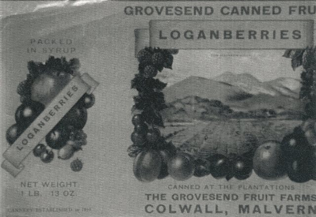 [Grovesend Fruit Farms]
